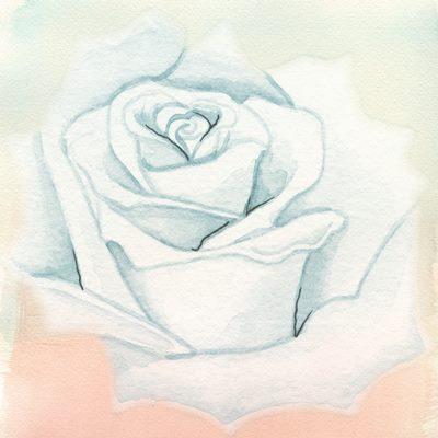 rose-sugestopediya-lozanov